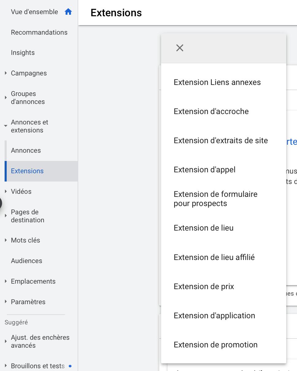 aperçu des extensions d'annonces disponibles dans Google Ads